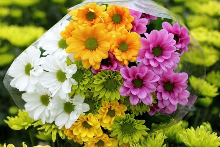 Букет невесты из хризантем фото 1