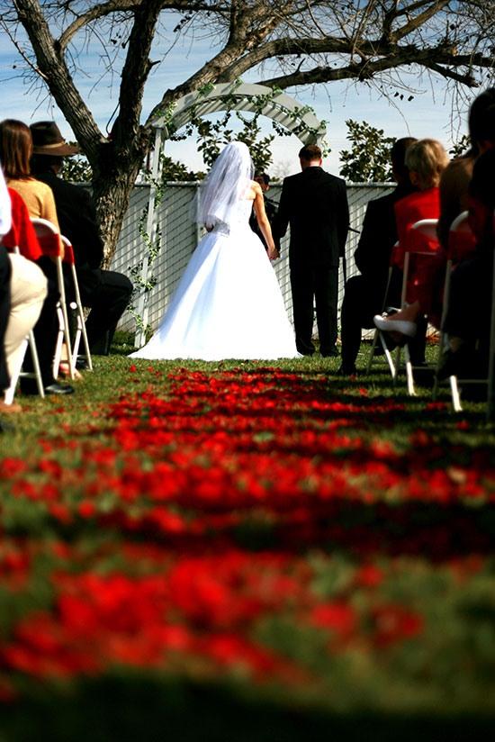 Свадьба на природе: организация и проведение