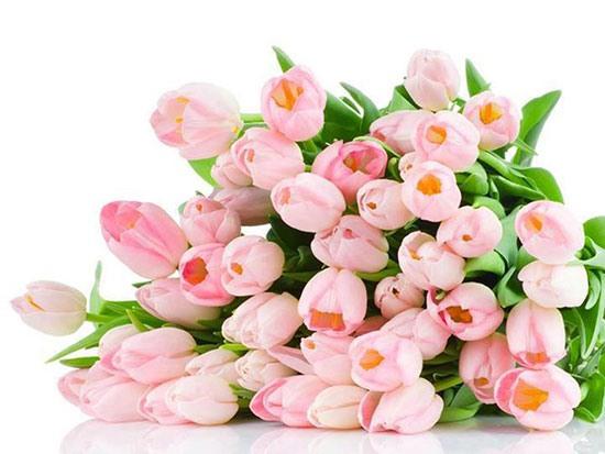 Выбираем цветы своим любимым thumbnail