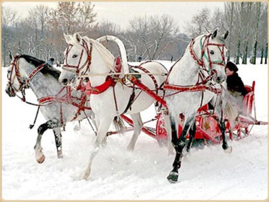 свадьба зимой фото 9