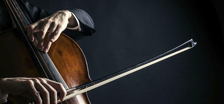 Музыкант виолончелист, соло